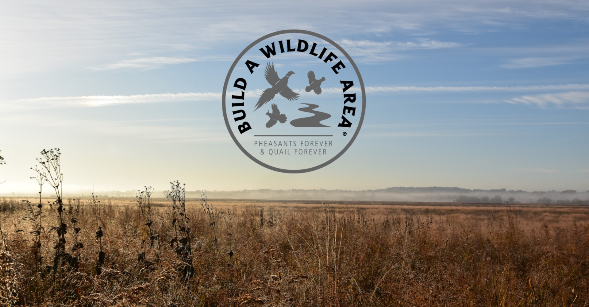 Build A Wildlife Area (BAWA)